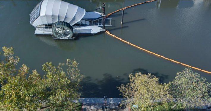 Comedores de basura flotantes en Baltimore